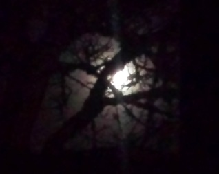 Christmas full moon from window