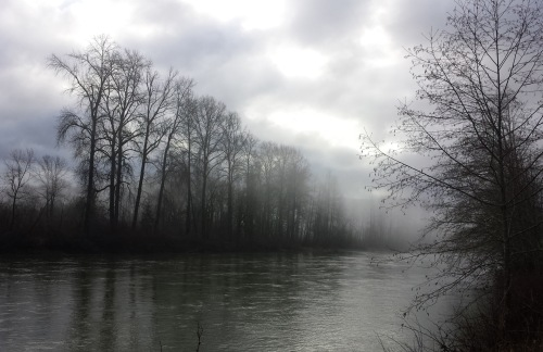 tolt confluence Winter scene2