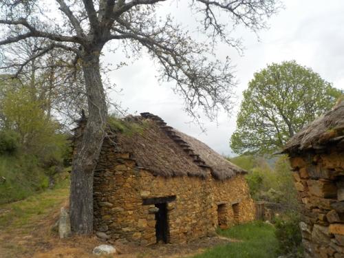 webvillar-del-monte-favorite-cottage