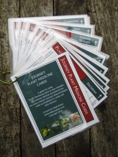 Journey Plant Medicine Cards