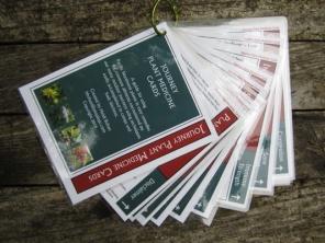 Journey Medicine cards 4web