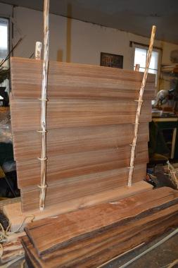 Education kits- cedar plant wall model for Karshner Museum
