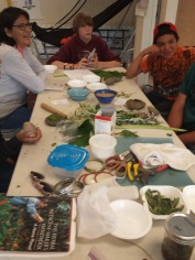Quileute Tribe Youth Program- Journey Plant Medicines