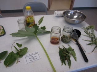 Quileute Tribe Youth Program- Journey Plant Mediciines