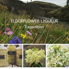 Elderflower Expedition