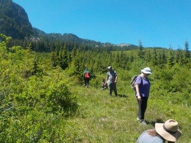 Alpine exploration