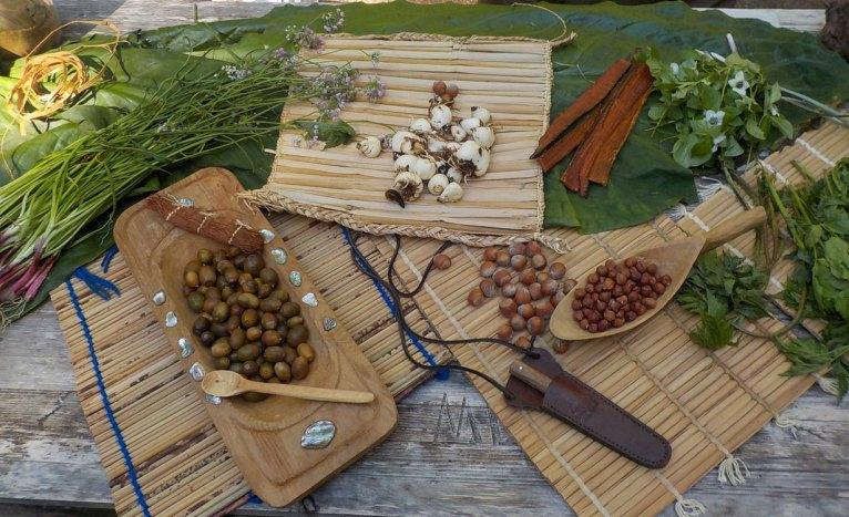 webTrad foods display 3