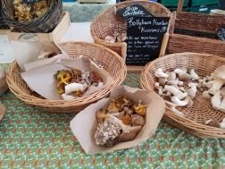Farmers market mushrooms