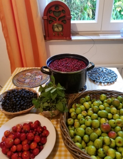 Killarney Hedgerow Harvests