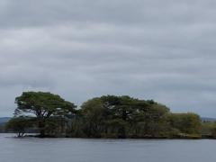 Island on Loch Lein