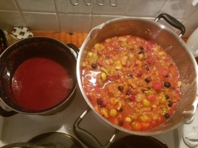 Cooking up Hedgerow Jelly and catsup