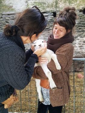 Dingle holding a baby lamb