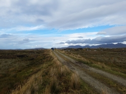 Roundstone bog view with group