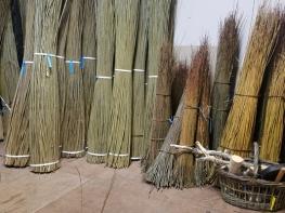 Willow in workshop