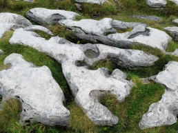 Burren rock formation