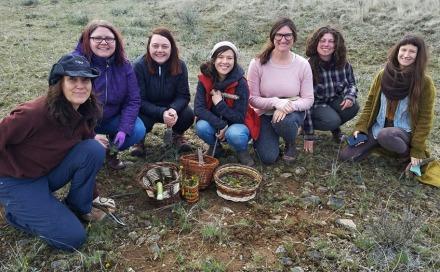 Sagebrush exploration group