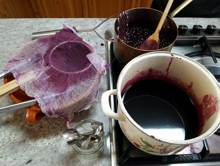 Berry syrup ogrape black elder.jpg