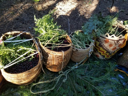 Yakama Huckleberry baskets