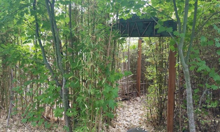 Scholars garden maze entranceweb