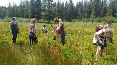 6 Camas meadow exploration exc.