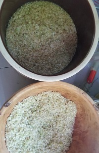 6 elderflower ale