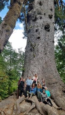 9 Big Spruce group