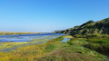 9 Estuary