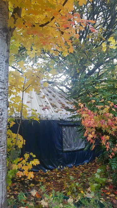 Scholars garden yurt fall 3 19 web